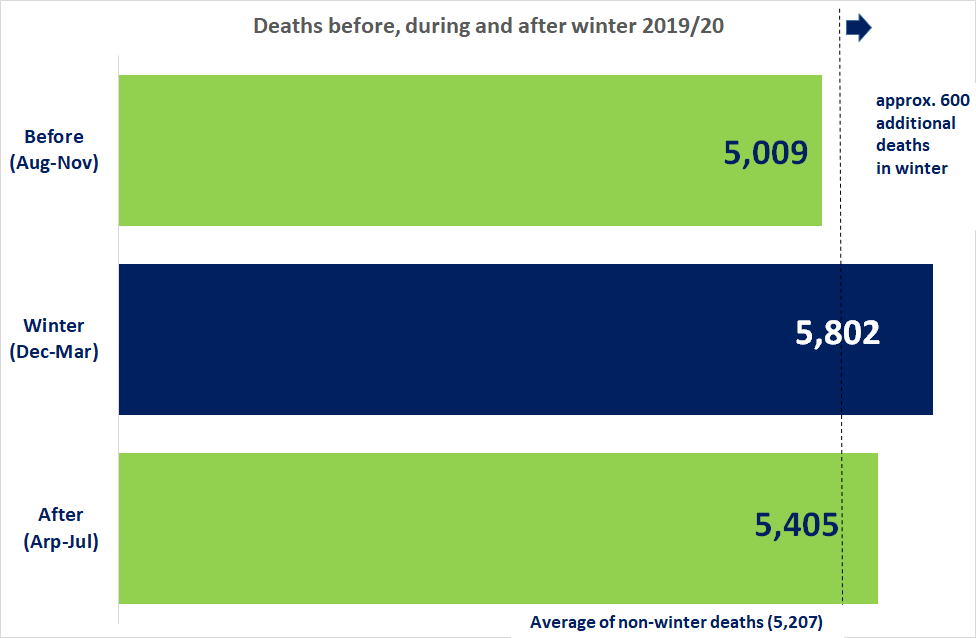 Excess winter deaths image