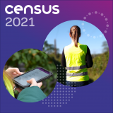 Census staff carrying out field work